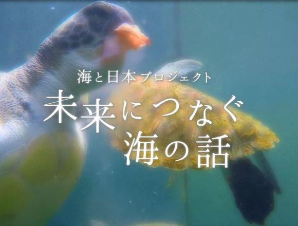 高知県-C05-s1.jpg