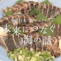 高知県-C02-s01