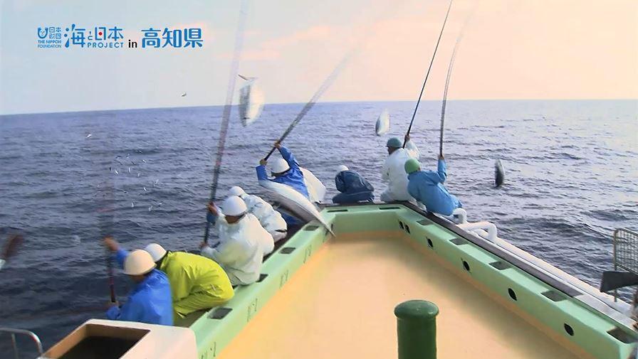 高知県-C02-s02