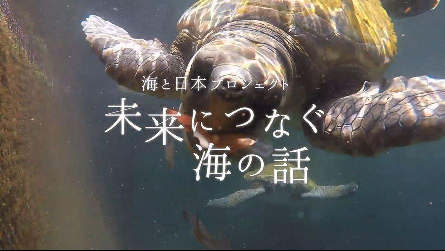 高知県-C01-s01